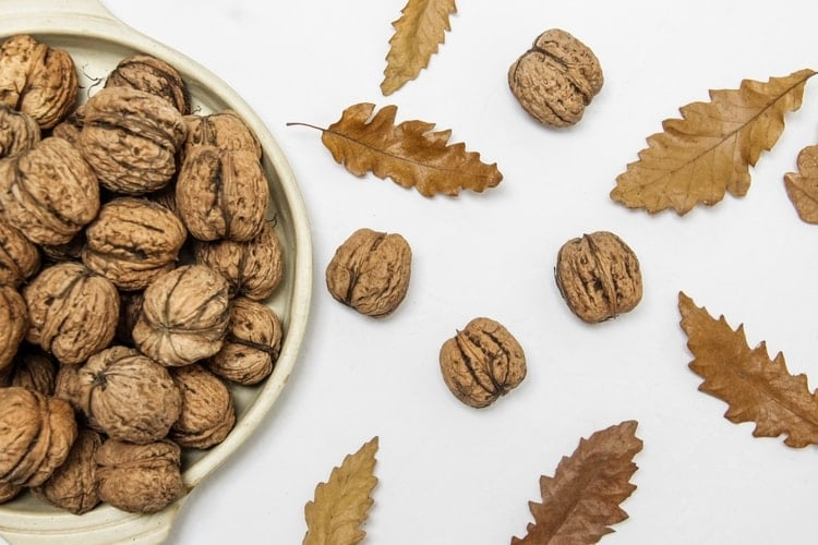 eating for hormone balance walnuts