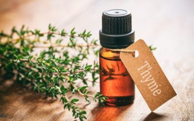Top 5 Essential Oils for Hormone Support (and How To Use Them)