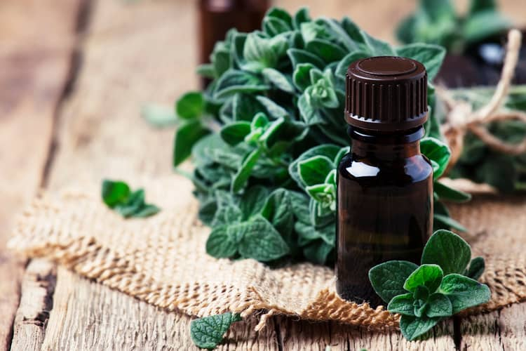 essential oil blends for menstrual cramps marjoram