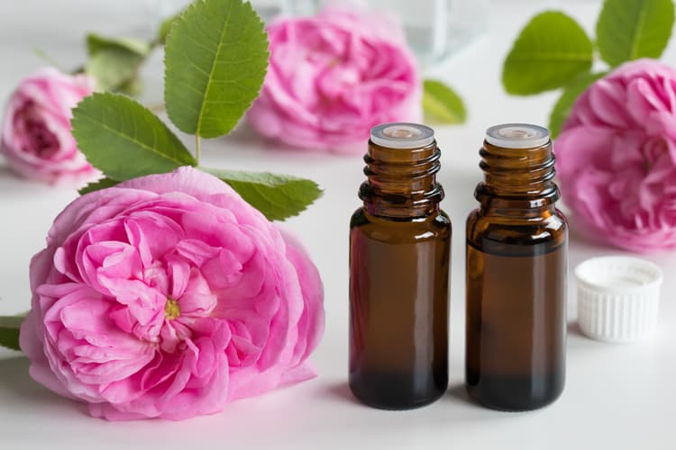 essential oil blends for menstrual cramps rose