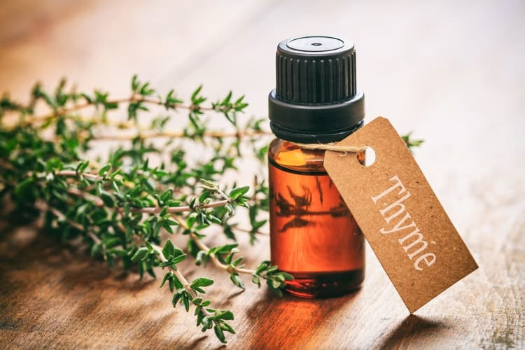best menopause essential oils thyme