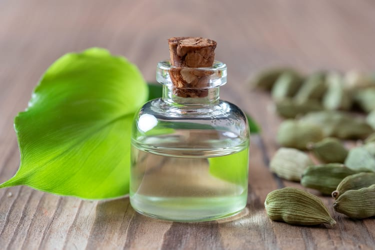 essential oils for nausea cardamom
