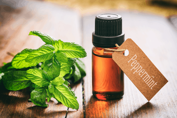 essential oils that help hot flashes peppermint