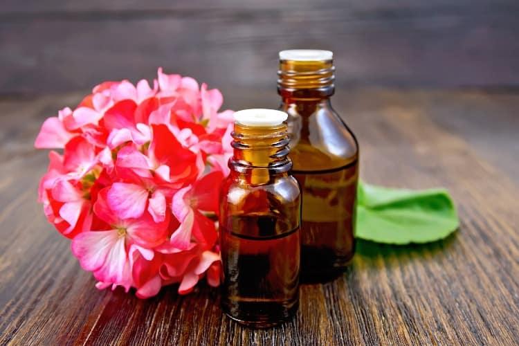 geranium essential oil for pcos