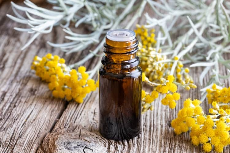 benefits of panaway essential oil for menstrual cramps helichrysum