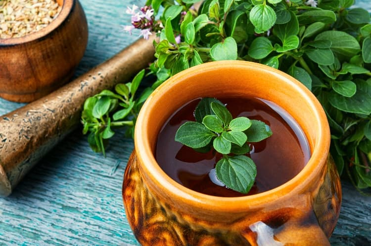 Marjoram For PCOS: Tea & Essential Oil Benefits (+ How To Use)