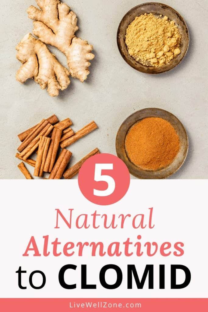 ginger and cinnamon as natural clomid replacements