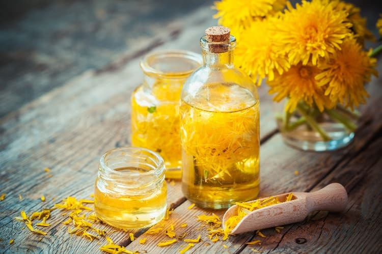 reverse estrogen dominance naturally with dandelion tincture