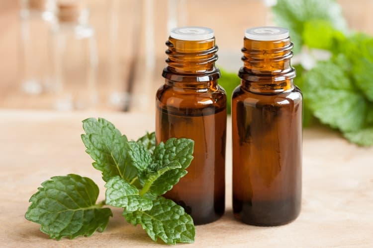 sore throat essential oils peppermint