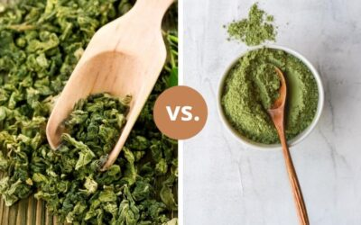The Best Green Tea for PCOS: Benefits | Loose Leaf vs. Matcha | How To Use