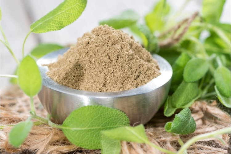 sage leaf benefits for menopause bone health