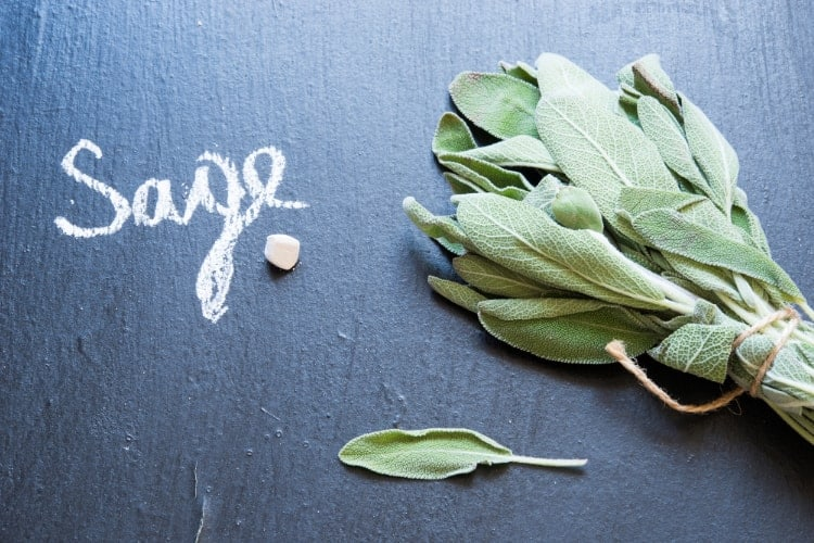 sage leaf for menopause