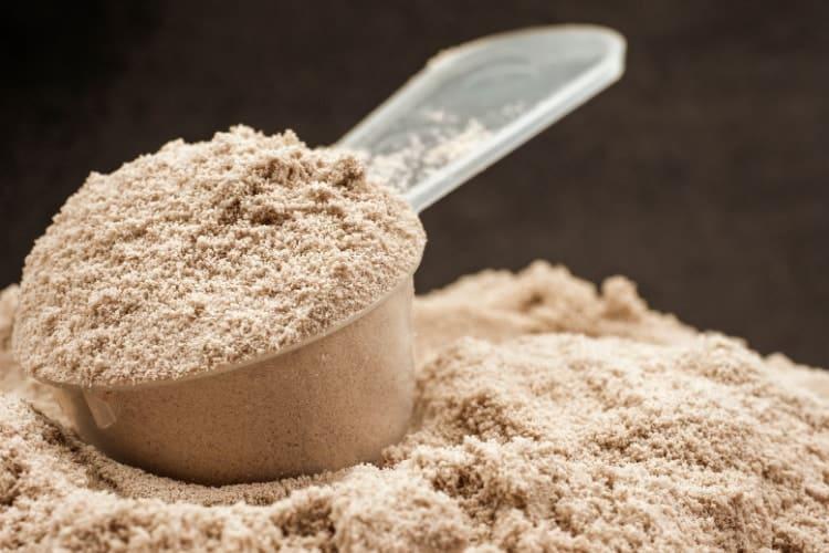 does whey protein affect estrogen