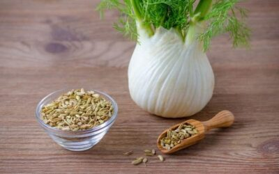 How to Use Fennel for Menstrual Cramps: Extract, Tea, Essential Oil