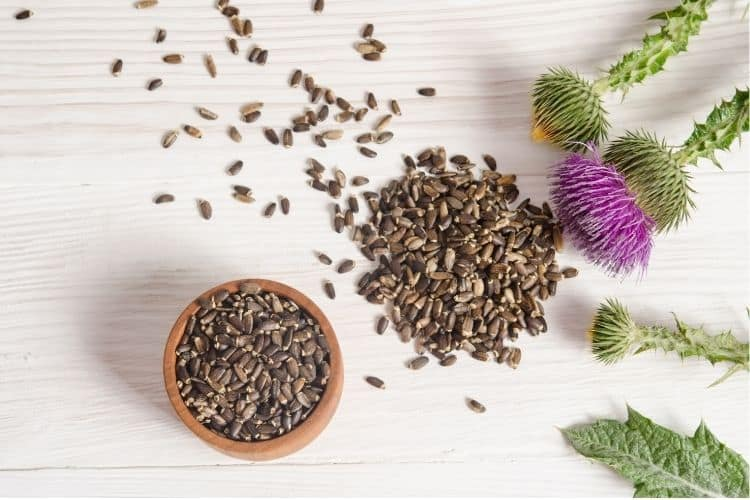 best herbs for perimenopause and menopause weight gain