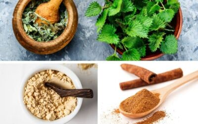 Herbs for Menopause Weight Gain (+ Best Supplement Recommendations for 2021)