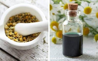 Why You Need Chamomile for Period Pain & PMS (and How to Use It)